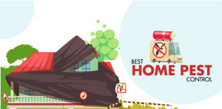 best home pest control